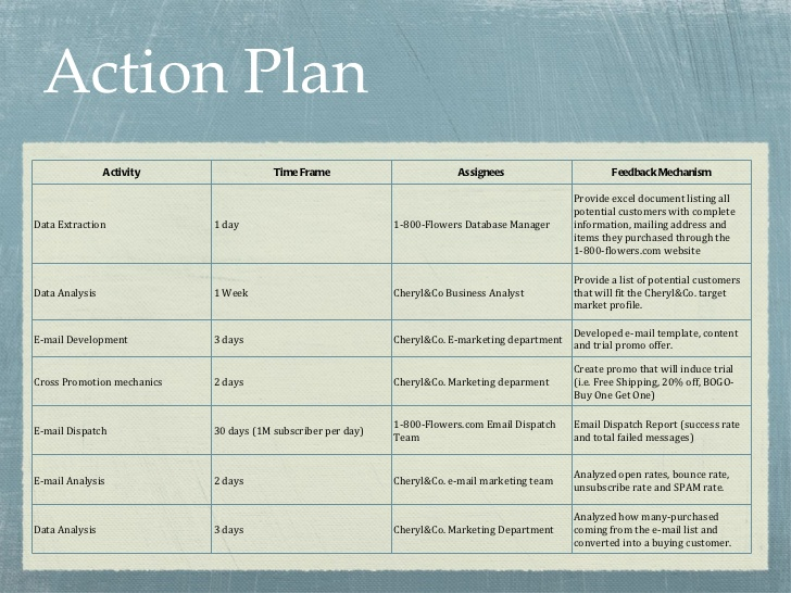 Enterprise Action Plan Template