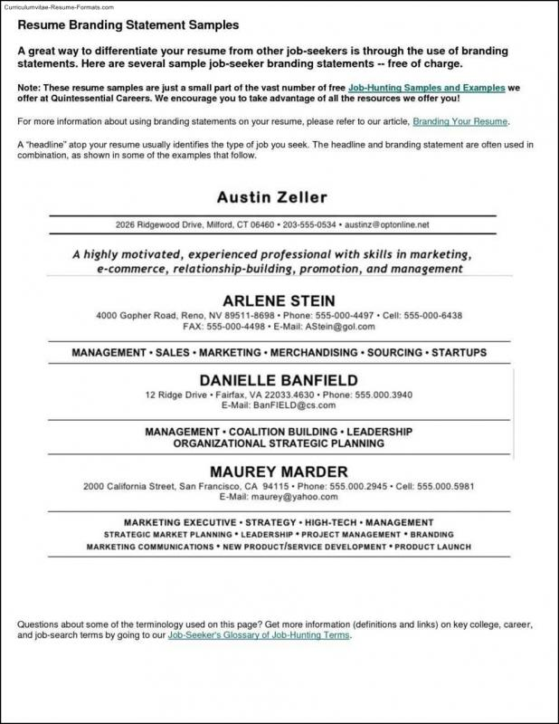 Curriculum Vitae Template | shatterlion.info