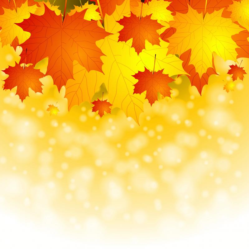 free thanksgiving templates