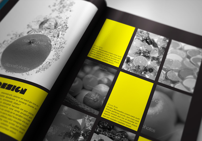 indesign portfolio template