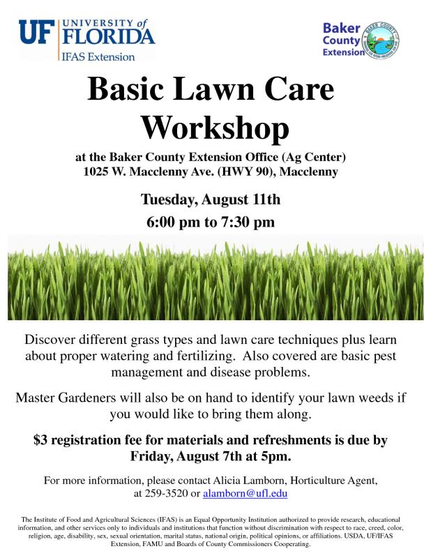 Lawn Care Flyer Template Shatterlionfo