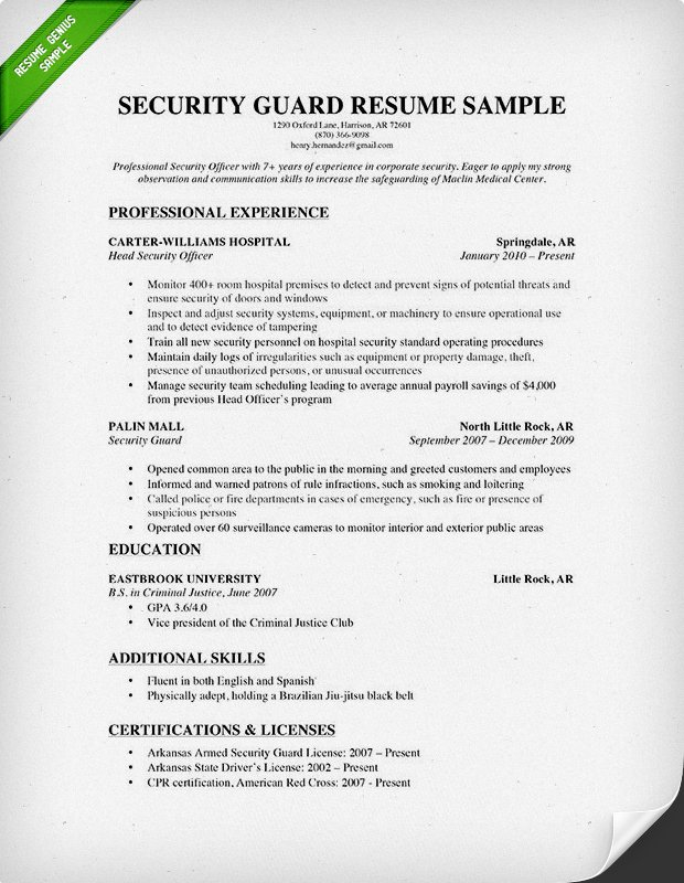 microsoft word resume template download