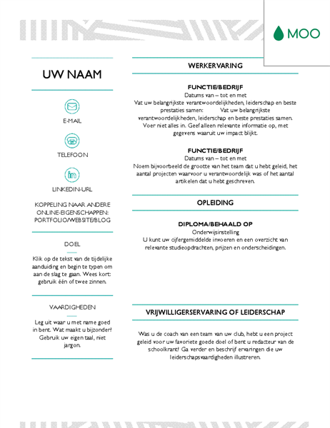 moo resume templates