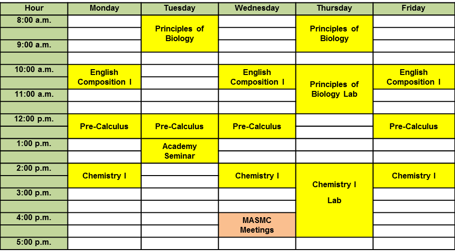Nursing schedule template for College school schedule template