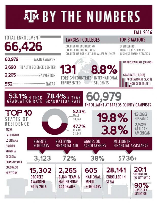 Tamu Resume Template  Tamu Resume Template